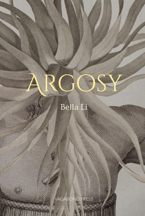 Cover image for Argosy