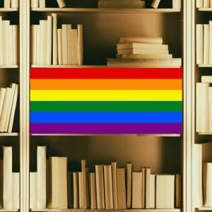 Promo image for Queering the Archives