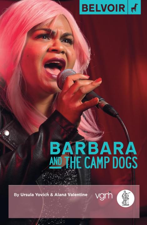 Cover image for Barbara and the Camp Dogs