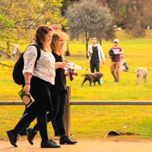 Photo of Lisa Dempster and Leah Kaminsky walking through a park in golden light; dogs and their people are in the background